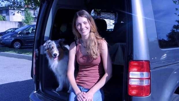 come addestrare i cani ad aspettare in macchina
