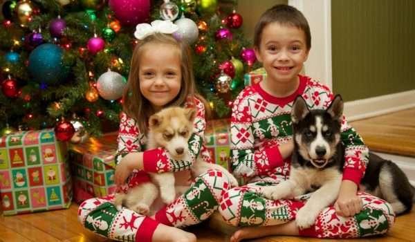 regali natale cane bambino