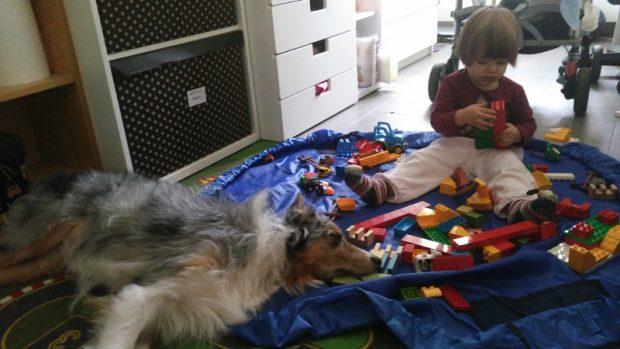cane giochi bambina