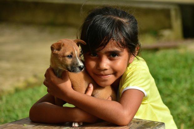 cane bambina