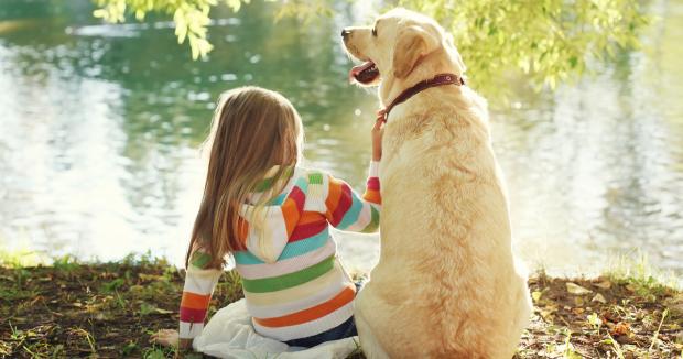 cani bambini lago