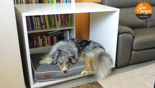 Cuccia cani fido nook blog