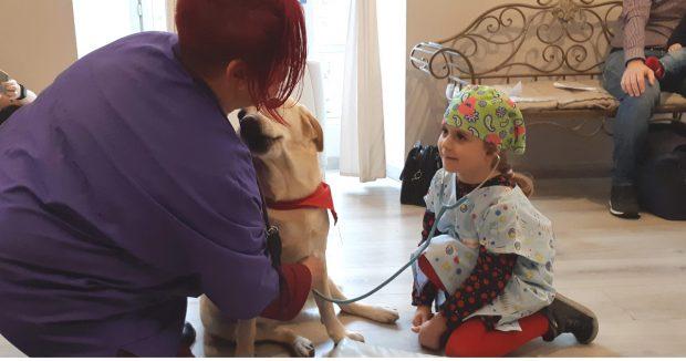 diabete cane veterinario