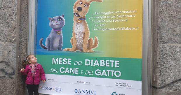 mese diabete cane e gatto