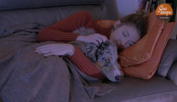 dormire con il cane