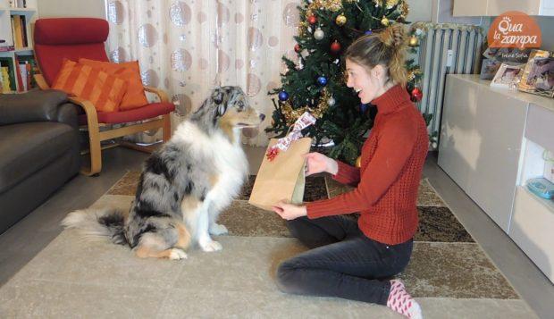 regalo natale cani monge