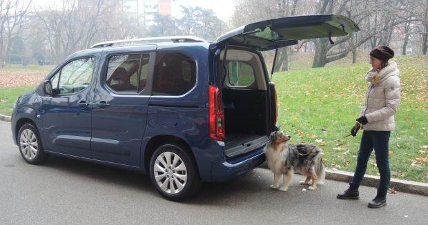 opel combo auto cani bambini famiglia 3