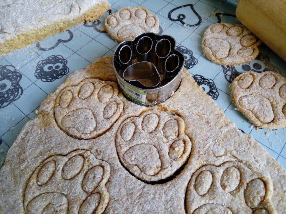 biscotti per cani snack ricette
