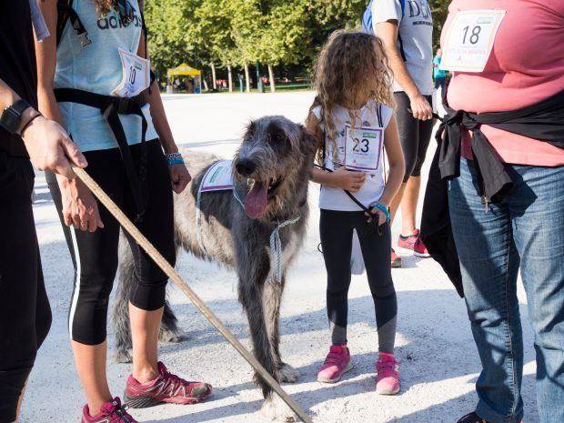 maratona cane bambina milano pet week