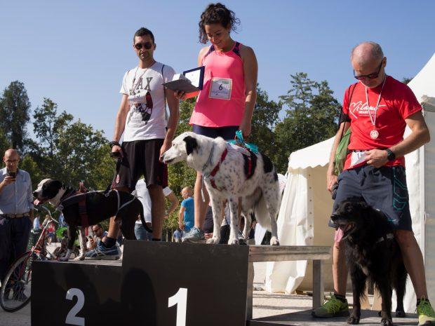 maratona cani milano premiazione