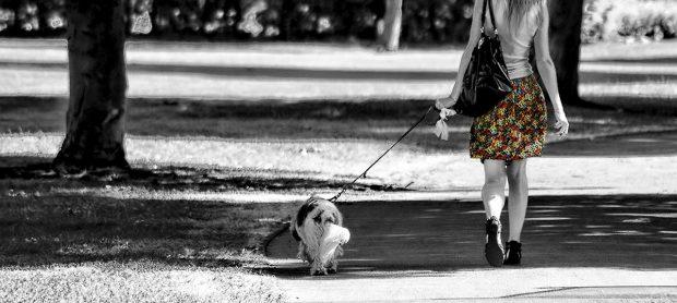 passeggiata cane ragazza blog