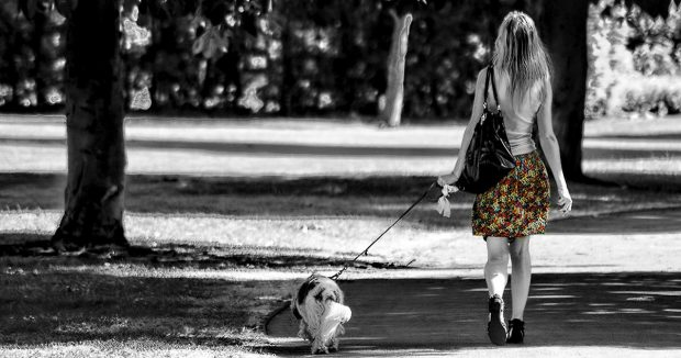 passeggiata cane ragazza fb